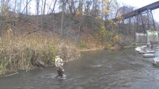 Fly Fishing Lake Ontario Tributaries 2014- Brown Trout / Salmon