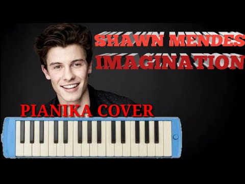 SHAWN MENDES - IMAGINATION #PianikaCover/DegungCover