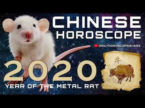 ox-2020-chinese-horoscope---chinese-zodiac-2020