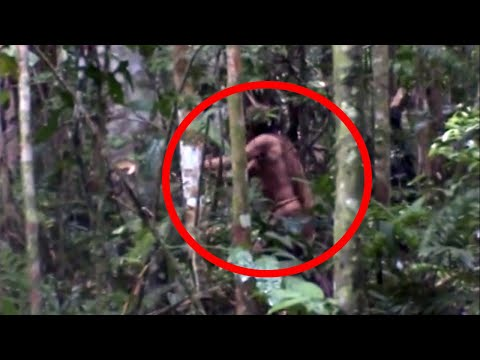 The Man Who Has Never Met the Outside World - Uncontacted Tribesman Caught on Camera