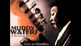 Muddy Waters & Johnny Winter / Trouble No More