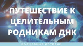 Ольга Писарькова. Путешествие к Целительным Родникам ДНК(, 2017-04-13T19:13:14.000Z)