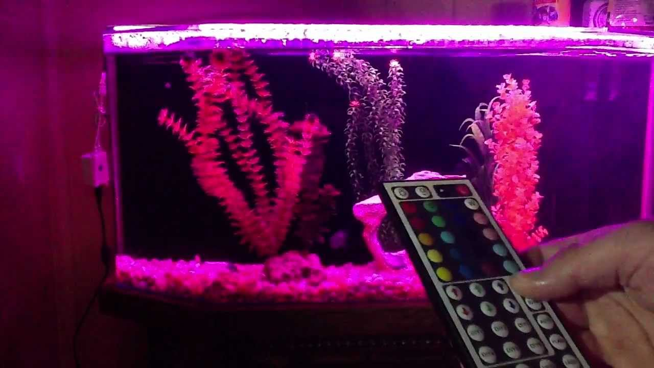 Fish tank lights for sale - Iris 144 Led Aquarium Moonlight For Sale On Ebay With Wireless Remote Remote Control Guide