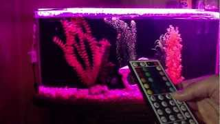 Iris 144 Led Aquarium Moonlight For Sale On Ebay With Wireless Remote » Remote Control Guide