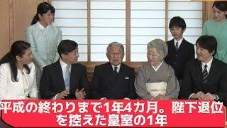 平成の終わりまで1年4カ月。陛下退位を控えた皇室の1年 高輪皇族邸 検索動画 13