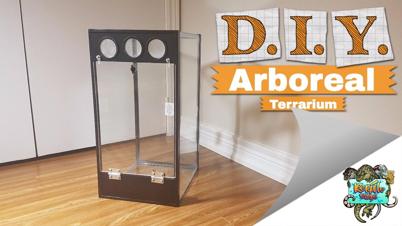 25 Arboreal Terrarium Crested Gecko Setup Youtube
