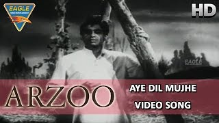 Arzoo Hindi Movie || Aye Dil Mujhe Video Songs || Kamini Kaushal, Dilip Kumar || Eagle Hindi Movies