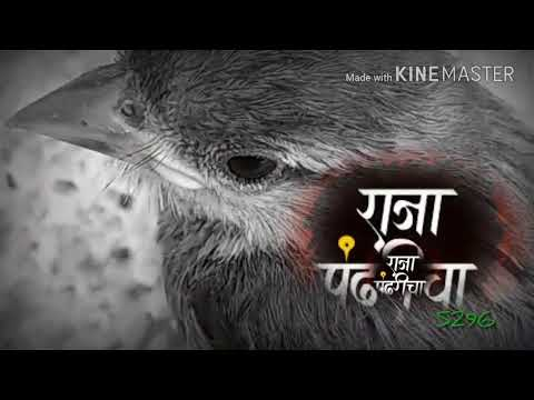 Bhakt Pundalika sathi 960x540 2 13Mbps 2017 09 30 15 28 04