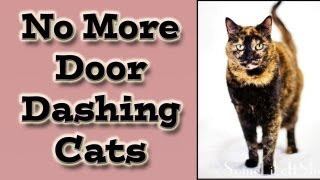 Cat Training: No More Door Dashing