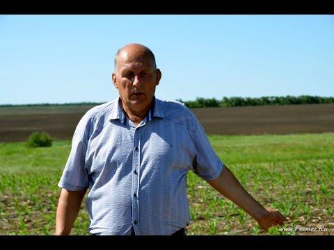 Оплата труда, прибыль, затраты в сельском хозяйстве. Фермер Потапов С.Г.