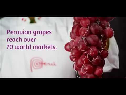Peruvian Natural Produce