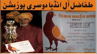ALL INDIA CHAMPION 2nd POSITION || PIGEONS LOVERS CHANNEL KI HELP SAY