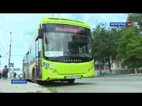 В Волгограде вышли в рейс новые автобусы