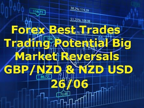 Top tools for forex trading