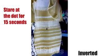 Il vestito e nero e blu o oro e bianco?