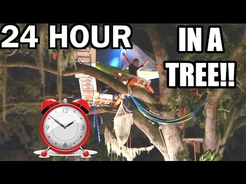 24 HOUR OVERNIGHT CHALLENGE IN A TREE!!