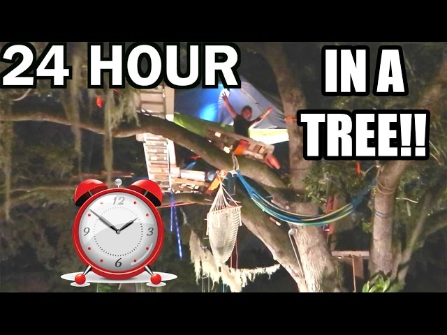 24 HOUR OVERNIGHT CHALLENGE IN A TREE!! | JOOGSQUAD PPJT