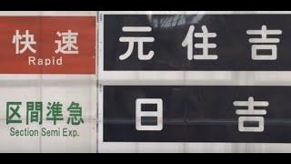 快速元住吉⁈区間準急日吉⁉2019東急電車まつりin長津田