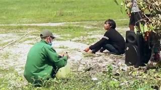 Nạn Bẫy Chim Yến Hiện Nay ở Phan Thiết | Salangane Bird Trap | Kiều Công Tử