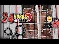 24 HORAS ACAMPANDO A SOLAS con MI EX NOVIO YOLO - YouTube