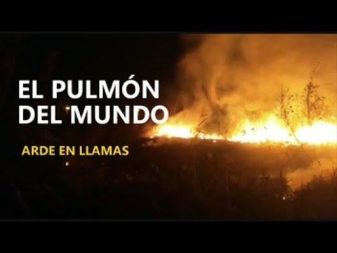 El pulmón del mundo arde en llamas