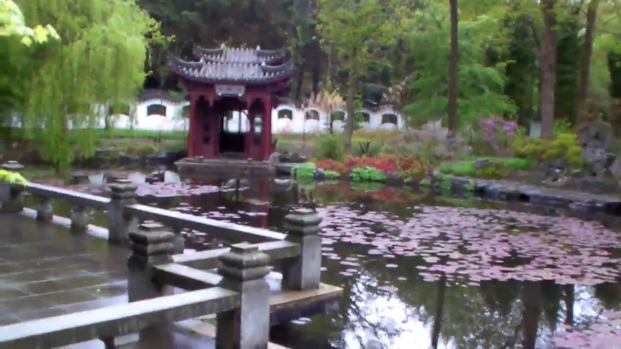 rondtour chinese tuin hortus haren sanyo th1 youtube