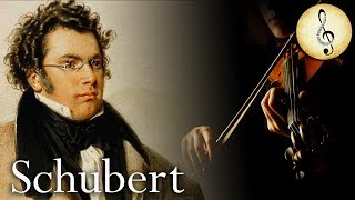 Classical Music for Studying | Relaxing Violin Music | Study Music for Reading, Concentration