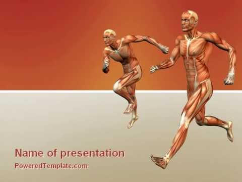 Muscular system powerpoint template by poweredtemplate youtube muscular system powerpoint template by poweredtemplate toneelgroepblik Gallery