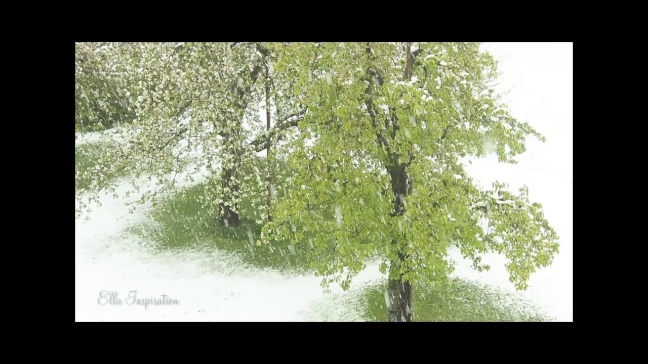 Snow At My Birthday Schnee An Meinem Geburtstag Youtube