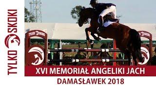 Grand Prix XVI Memoriał Angeliki Jach - ZR Damasławek 08.07.2018