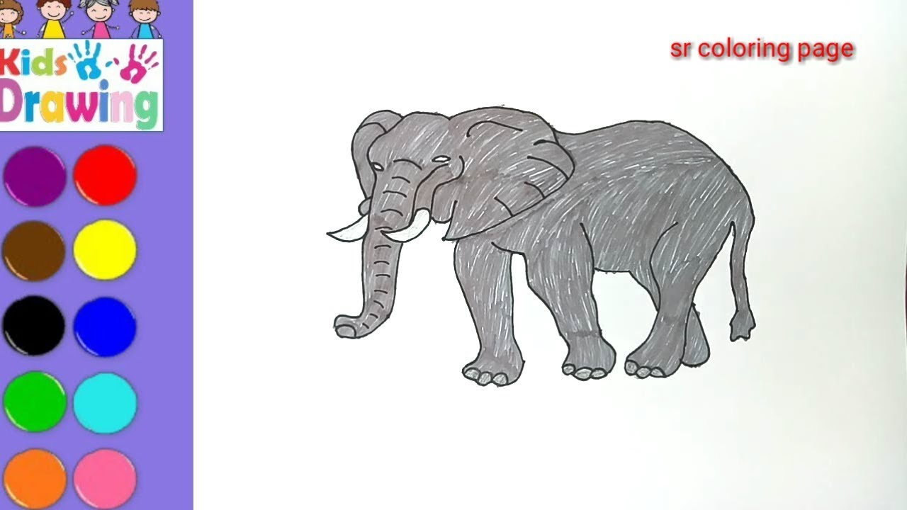 How to draw a elephant/coloring pages for kids - YouTube