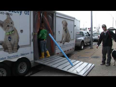HSMO Joplin Tornado Relief - Exclusive Video