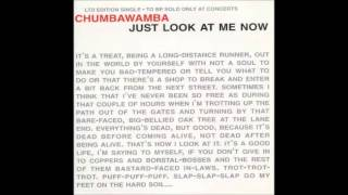 Watch Chumbawamba Just Look At Me Now video