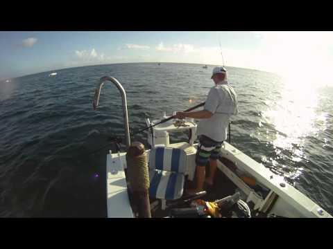 Mackerel fishing mermaid reef 2012 Part 2