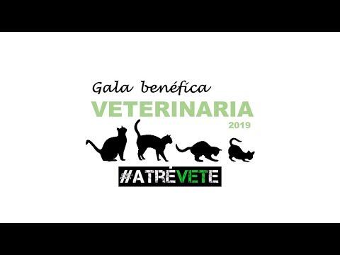 Gala Facultad De Veterinaria UCM. Atrévete 2019. Proyecto CER