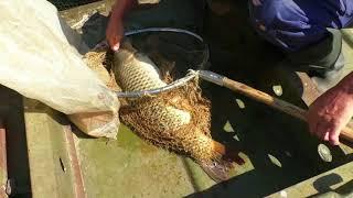 Відпочинок і риболовля на озері Лазовица Климовицькому району