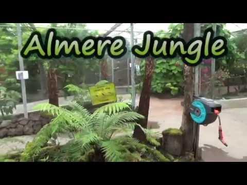 Almere Jungle - YouTube