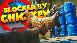 CS:GO - PRO blocked by a Chicken
