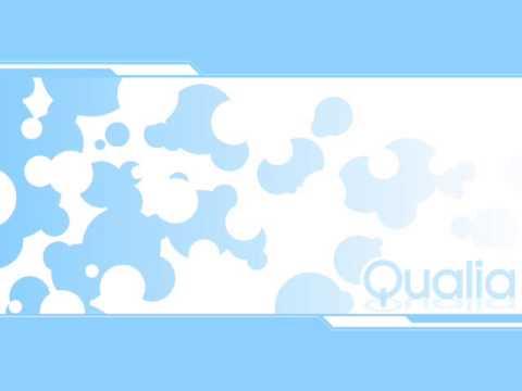 Junk - Qualia