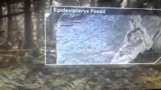 Планета динозавров пернатые динозавры часть 1