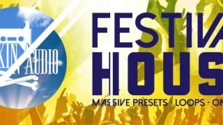 Rankin Audio - Festival House (Massive Presets Loops One-Shots)