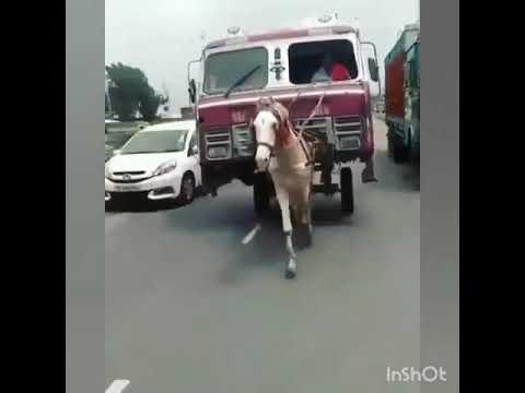 New Punjabi Song Munda Karda Canada Driver Re