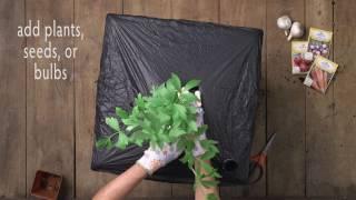 EarthBox Root & Veg Planting