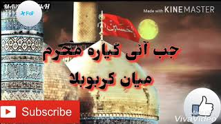 Nadeem sarwar nohay lyrical WhatsApp status video (bhai shabeer fi aman Allah)