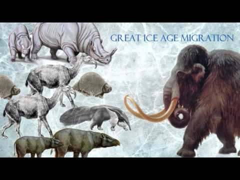 Ice Age characters in real life - Part 1