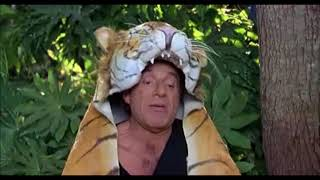 VACANZE DI NATALE IN INDIA LA TIGRE
