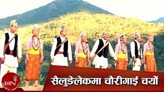Limbu Nritya - Shailunge Lekh ma