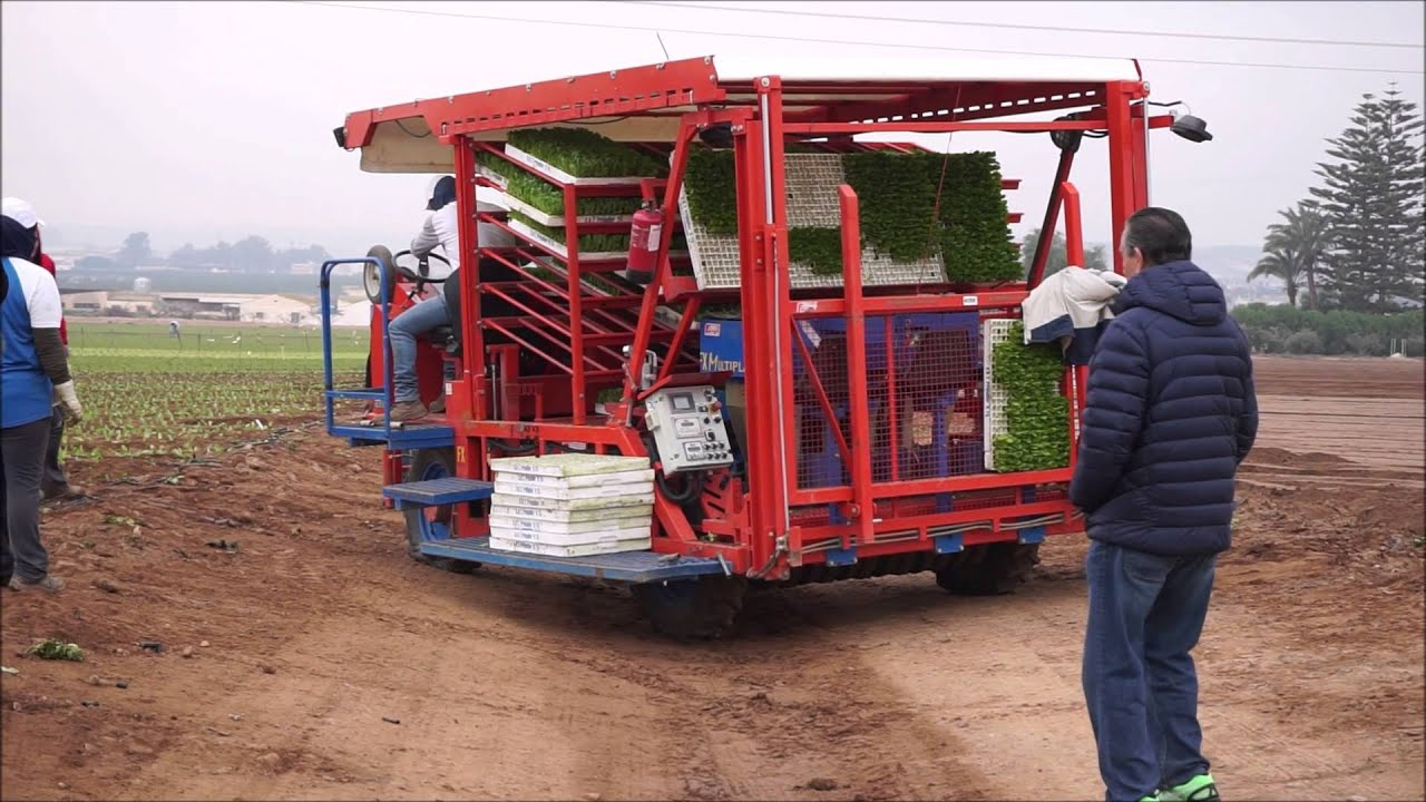 FX & FMAX: Self Propelled Transplanter