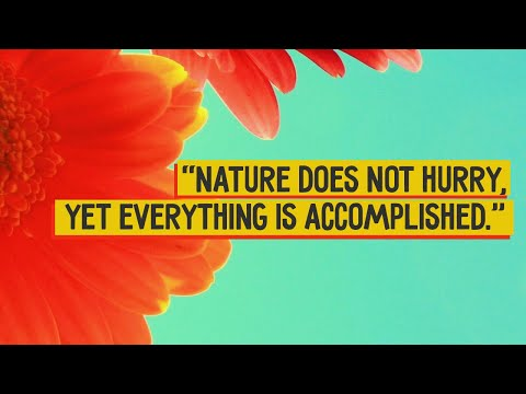 Top 10 Beautiful Nature Quotes