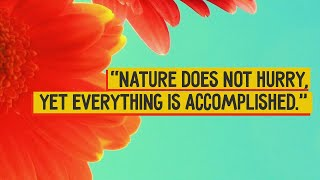 Top 10 Beautiful Nature Quotes